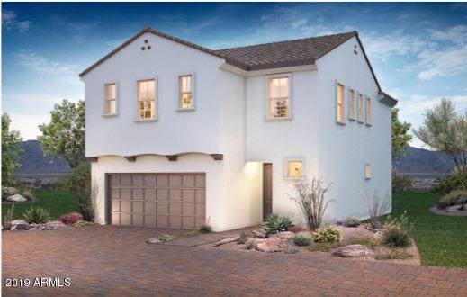 31546 N 24TH Drive, Phoenix, AZ 85085 (MLS #5969035) :: Yost Realty Group at RE/MAX Casa Grande
