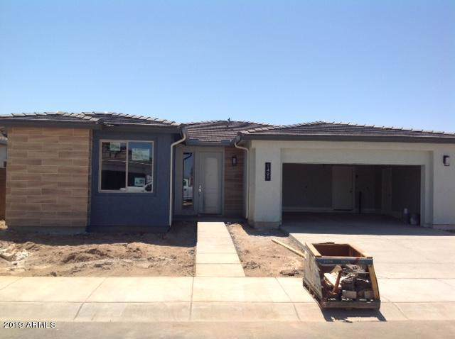 1461 W Silver Creek Lane, Queen Creek, AZ 85140 (MLS #5969713) :: Openshaw Real Estate Group in partnership with The Jesse Herfel Real Estate Group