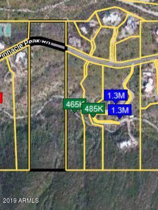 0 E Pinnacle Peak Road, Scottsdale, AZ 85255 (MLS #5976792) :: Riddle Realty Group - Keller Williams Arizona Realty