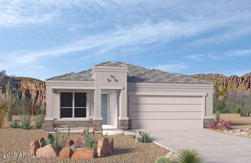 2022 W Yellowbird Lane, Phoenix, AZ 85085 (MLS #5977380) :: The Laughton Team