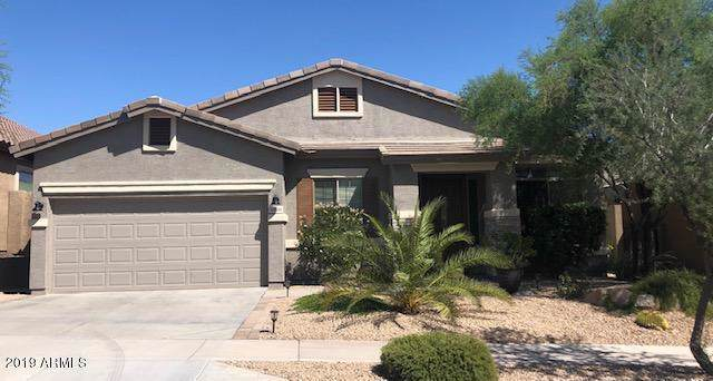 33511 N 25TH Drive, Phoenix, AZ 85085 (MLS #5977720) :: Conway Real Estate