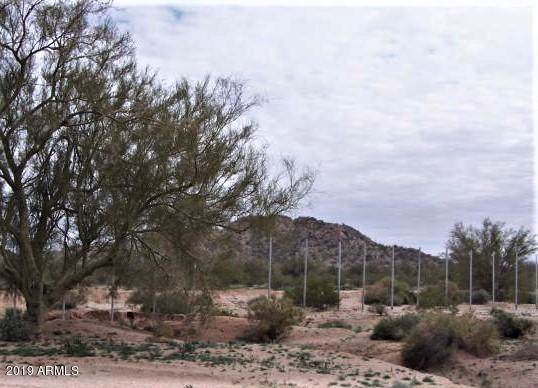 1196 S Ralston Road, Maricopa, AZ 85139 (MLS #5977883) :: Arizona Home Group