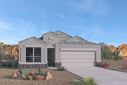 2023 W Yellowbird Lane, Phoenix, AZ 85085 (MLS #5978755) :: The Laughton Team