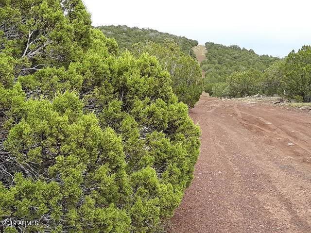 Show Low Highlands Lot #318, Vernon, AZ 85940 (MLS #5978975) :: Revelation Real Estate