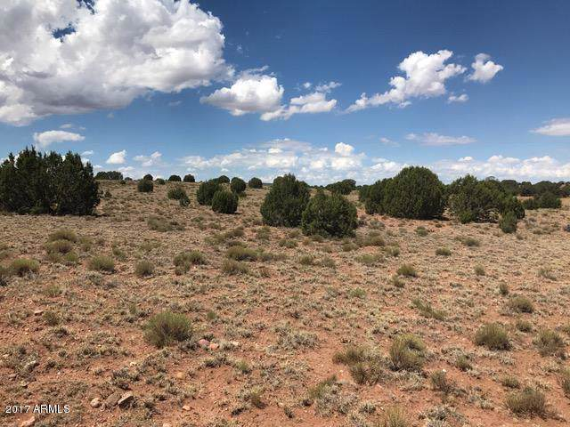 Ranch of The White Mountains Lot 33, Concho, AZ 85924 (MLS #5979090) :: Revelation Real Estate