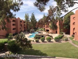 4303 E Cactus Road #235, Phoenix, AZ 85032 (MLS #5979685) :: Lifestyle Partners Team