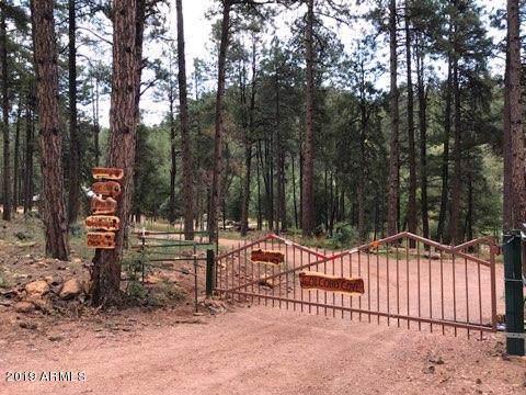 2142 E Creekside Circle, Payson, AZ 85541 (MLS #5979772) :: Brett Tanner Home Selling Team