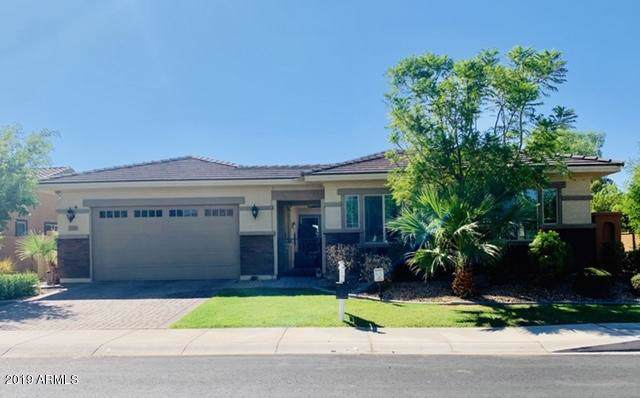 2396 N 156th Drive, Goodyear, AZ 85395 (MLS #5980513) :: The Property Partners at eXp Realty