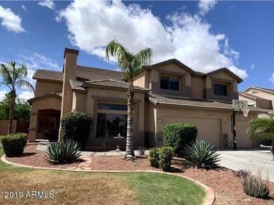 3235 E Devonshire Court, Gilbert, AZ 85297 (MLS #5984628) :: Team Wilson Real Estate