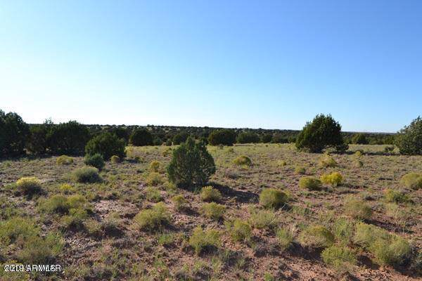 TBD Parcel 034, Concho, AZ 85924 (MLS #5989062) :: Kortright Group - West USA Realty