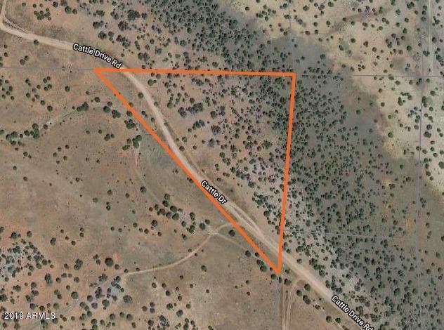 44500 N Cattle Drive, Ash Fork, AZ 86320 (MLS #5991697) :: Arizona 1 Real Estate Team