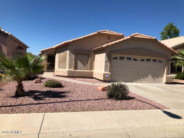 16224 N 162ND Lane, Surprise, AZ 85374 (MLS #5991770) :: REMAX Professionals