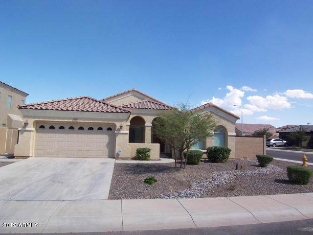 3689 S Cottonwood Court, Chandler, AZ 85286 (MLS #5992483) :: Yost Realty Group at RE/MAX Casa Grande