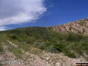 xxxx N Wilderness Trail, Douglas, AZ 85607 (MLS #5992941) :: REMAX Professionals