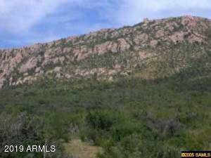 xxxx N Wilderness Trail, Douglas, AZ 85607 (MLS #5992942) :: The Copa Team | The Maricopa Real Estate Company