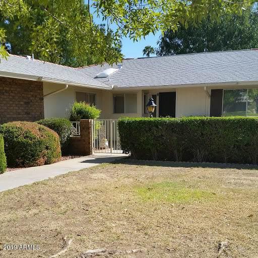 9713 W Shasta Drive, Sun City, AZ 85351 (MLS #5994189) :: Occasio Realty