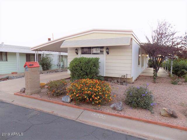 16206 N 33RD Street, Phoenix, AZ 85032 (MLS #5995302) :: The Pete Dijkstra Team