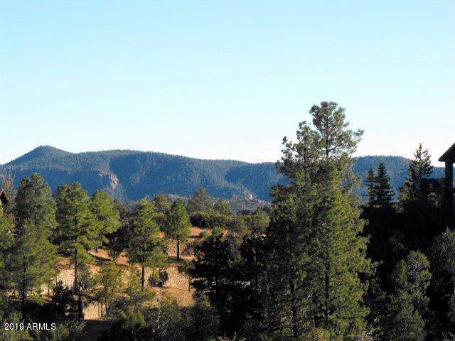 2808 E Coyote Mint Circle, Payson, AZ 85541 (MLS #5996621) :: The Kenny Klaus Team