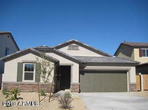 10230 W Levi Drive, Tolleson, AZ 85353 (MLS #5997551) :: The Kenny Klaus Team