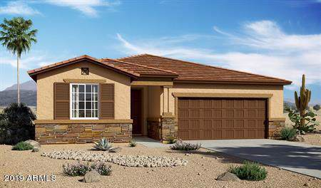 11961 N 162ND Lane, Surprise, AZ 85379 (MLS #6001084) :: Revelation Real Estate