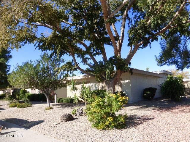 10230 W Hutton Drive, Sun City, AZ 85351 (MLS #6002121) :: The Ramsey Team
