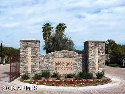 1749 N Lemon Street, Mesa, AZ 85205 (MLS #6003928) :: Selling AZ Homes Team
