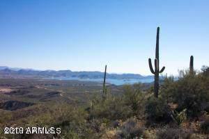 7799 E Castle Hot Springs Road, Morristown, AZ 85342 (MLS #6004957) :: Revelation Real Estate