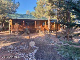 2708 Palomino Trail, Overgaard, AZ 85933 (MLS #6006277) :: The Property Partners at eXp Realty