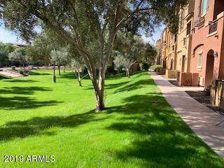900 S 94TH Street #1081, Chandler, AZ 85224 (MLS #6006444) :: Riddle Realty Group - Keller Williams Arizona Realty