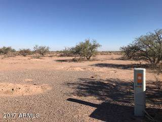 14090 S Palo Verde Trail, Arizona City, AZ 85123 (MLS #6006498) :: Yost Realty Group at RE/MAX Casa Grande