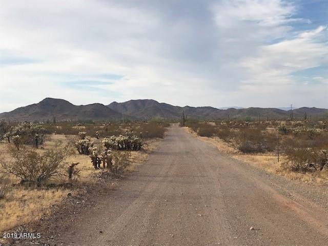 151st Ave Dixileta Drive, Surprise, AZ 85378 (MLS #6006528) :: My Home Group