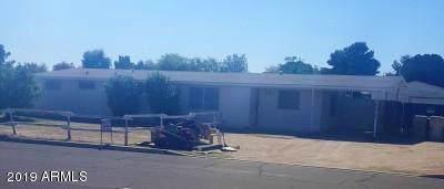 16040 N 71ST Avenue, Peoria, AZ 85382 (MLS #6006736) :: Brett Tanner Home Selling Team