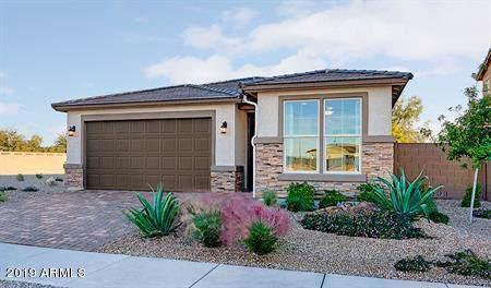 17501 W Hadley Street, Goodyear, AZ 85338 (MLS #6007843) :: Nate Martinez Team