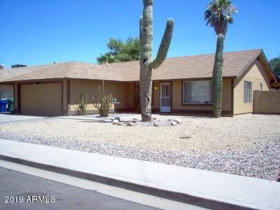 1105 E Indigo Street, Mesa, AZ 85203 (MLS #6010063) :: The Kenny Klaus Team