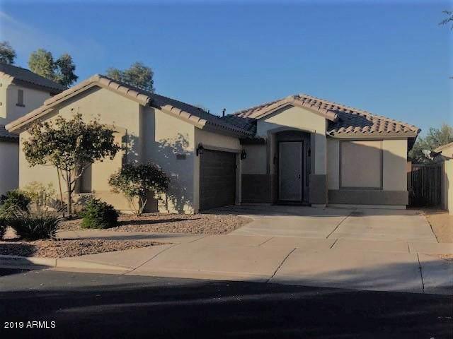 21066 E Aldecoa Drive, Queen Creek, AZ 85142 (MLS #6010370) :: Nate Martinez Team