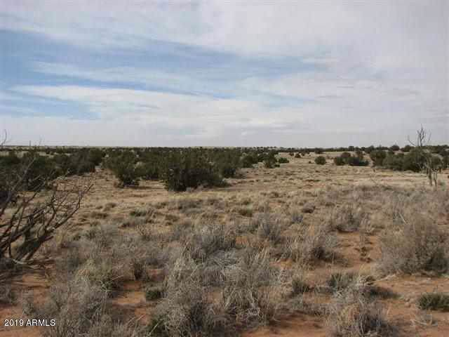 Lot 632 Chevelon Canyon Ranch, Overgaard, AZ 85933 (MLS #6010543) :: The Kenny Klaus Team
