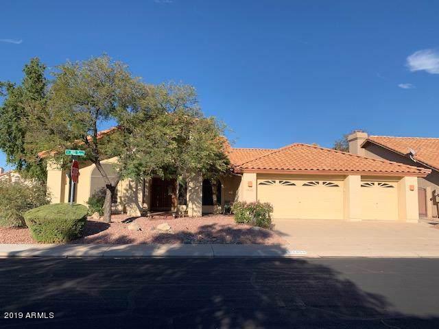 1056 W Iris Drive, Gilbert, AZ 85233 (MLS #6011018) :: Revelation Real Estate