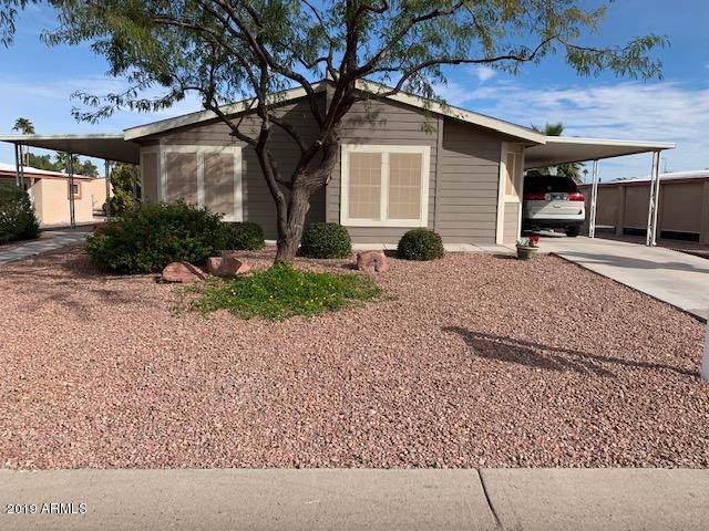 9031 E Olive Lane S, Sun Lakes, AZ 85248 (MLS #6011342) :: Kepple Real Estate Group