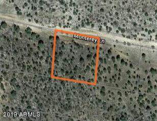 29655 W Monterey Lane, Seligman, AZ 86337 (MLS #6011368) :: neXGen Real Estate