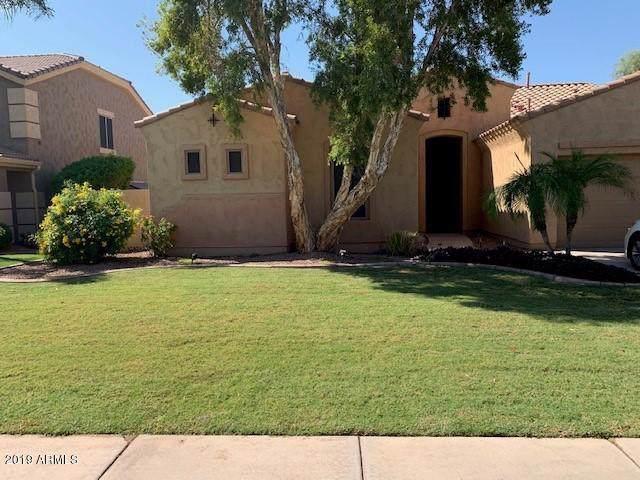 558 N Swallow Lane, Gilbert, AZ 85234 (MLS #6011691) :: Team Wilson Real Estate