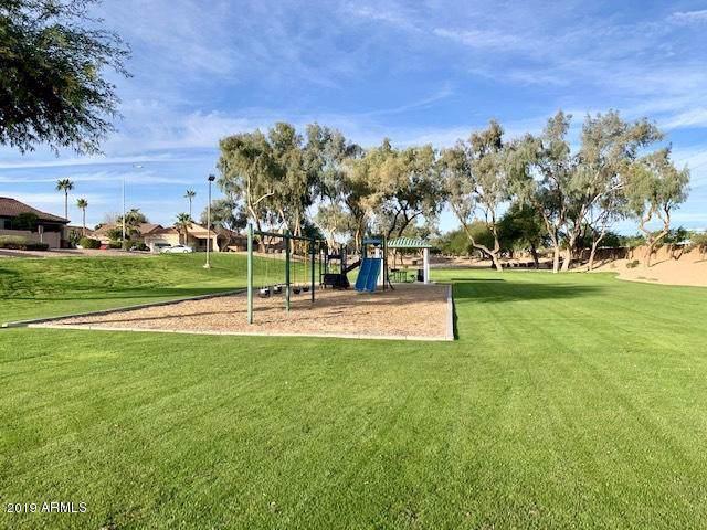 6702 W Ivanhoe Street, Chandler, AZ 85226 (MLS #6012684) :: Dijkstra & Co.