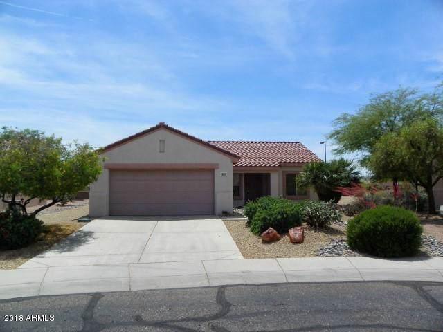 16091 W Wildflower Drive, Surprise, AZ 85374 (MLS #6012872) :: Long Realty West Valley