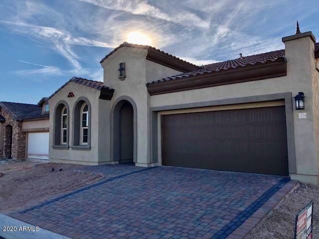 1824 N Bernard Circle, Mesa, AZ 85207 (MLS #6019935) :: The Kenny Klaus Team