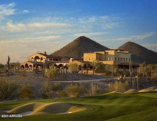 30319 N Sage Drive, Peoria, AZ 85383 (MLS #6020783) :: Nate Martinez Team