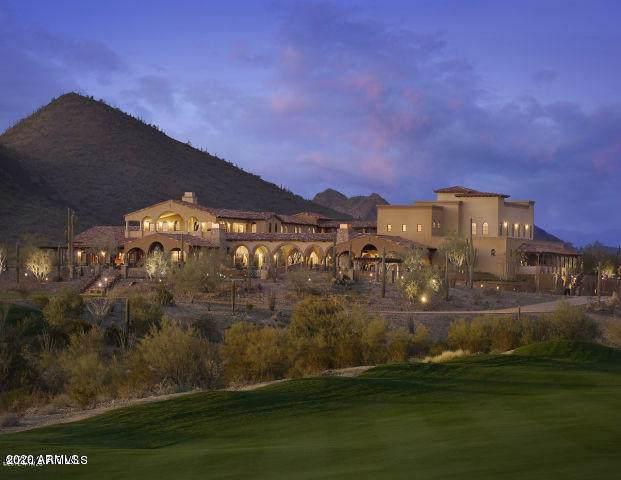 30545 N Sage Drive, Peoria, AZ 85383 (MLS #6020788) :: Nate Martinez Team