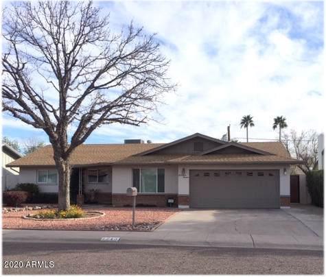 1713 W Harmont Drive, Phoenix, AZ 85021 (MLS #6021696) :: The Kenny Klaus Team