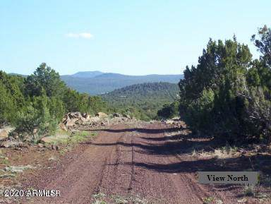 356 Az-61 Highway - Photo 1
