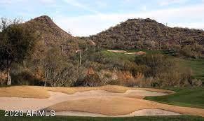 25719 N Cinch Drive, Peoria, AZ 85383 (MLS #6024434) :: The Kenny Klaus Team