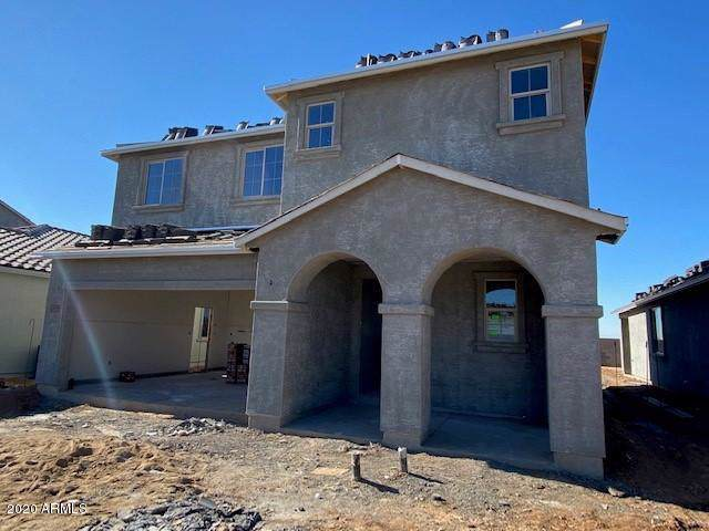 25246 N 143RD Lane, Surprise, AZ 85387 (MLS #6025899) :: The Property Partners at eXp Realty