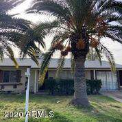5943 W Britton Avenue, Phoenix, AZ 85033 (MLS #6026881) :: Brett Tanner Home Selling Team